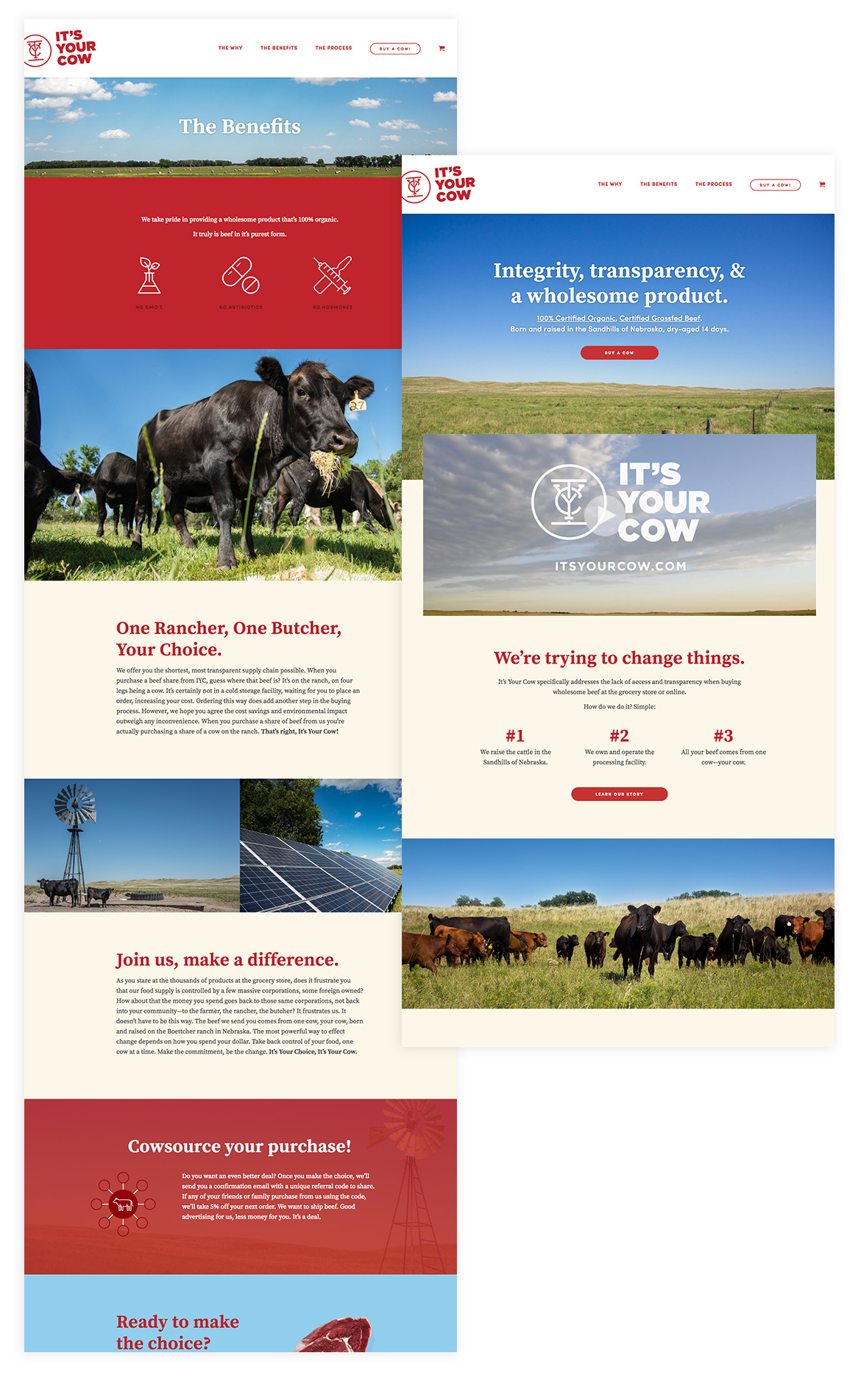 AdamCasey_Its-Your-Cow_site-page